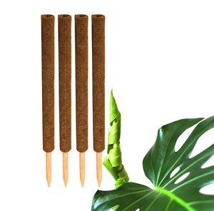 4x Kokos Pflanzstab 60 cm Rankstab Rankhilfe