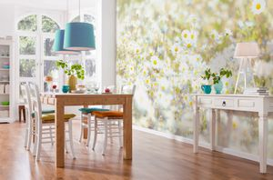 "Komar Fototapete ""Daisies"", weiß/gelb/grün, 368 x 254 cm"