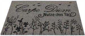 Bestlivings Fußmatte Kokos Schuhabtreter 40x60cm in Grau ( Carpe Diem )