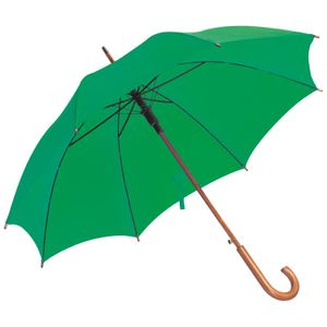 Automatik-Regenschirm / Farbe: grün