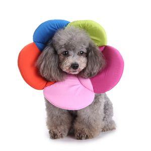 Weicher Schutzkragen Halskrause Anti-Biss Anti-lecken Halskragen für Hund Katze, L: Halslinie 35-38cm