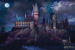 Harry Potter Poster Hogwarts 61 x 91,5 cm