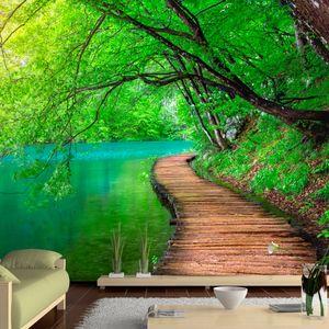 Vlies Tapete  Top  Fototapete  Wandbilder XXL  350x256 cm  LANDSCHAFT NATUR WALD BRÜCKE c-A-0073-a-b