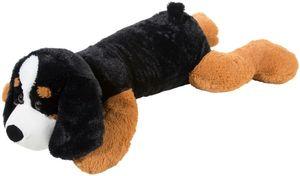 Hund Berner Sennehund Xxl
