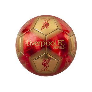 Liverpool FC Unterschriften Skill Ball TA4622 (Einheitsgröße) (Rot/Gold)