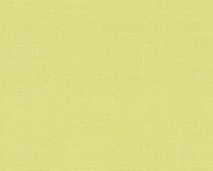Esprit Home Vliestapete Desert, grüngelb, 10,05 m x 0,53 m, 958307, 95830-7