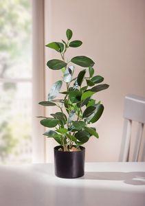 Deko-Pflanze 'Green' Grünpflanze Blüte Kunst Topf Tisch Deko Raum