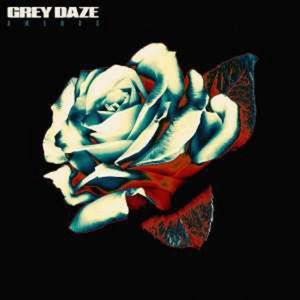 Amends (Limited Edition) - Grey Daze