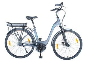 smartEC CitX-7NS City Pedelec/E-Bike 28Zoll Mittelmotor Rücktrittbremse