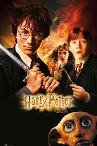 Harry Potter und die Kammer des Schreckens Poster 91,5 x 61 cm
