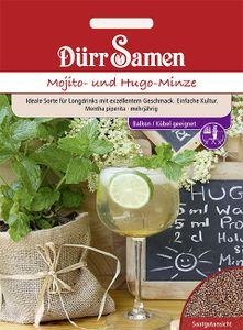 Dürr Samen - Mojito- und Hugo-Minze