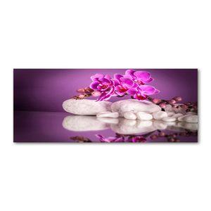 Tulup® Leinwandbild - 125x50 cm - Wandkunst - Drucke auf Leinwand - Leinwanddruck  - Blumen & Pflanzen - Rosa - Rosa Orchidee