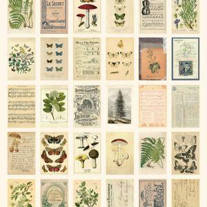 30 Stück / Karton Alter Wald Tiere Pflanzen Specimen Postkarte Vintage -(Probe,)
