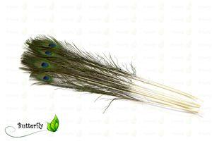 10 Pfauenfedern 75-90cm Natur