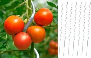 50 Tomaten Spiralstab 1,8m Tomatenstab Rankhilfe Pflanzstab Rankstab Tomate Stab