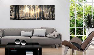 Modernes Wandbild c-B-0077-b-c (135x45) - 1 Teilig Bilder Fotografie auf Leinwand Foto Bild Dekoration Wand Bilder Kunstdruck WALD NATUR BÄUME SONNENSCHEIN