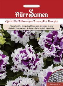 Petunien Pirouette Purple