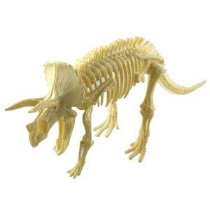 Modššle SimulšŠ Tier Modššle StšŠršŠoscopique DIY 3D Dinosaure Ancien