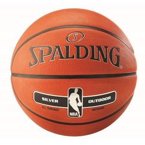 Spalding NBA SILVER IN/OUT Basketball Gr. 7