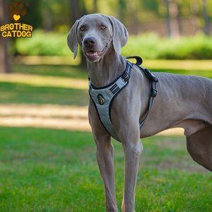 Brother Cat Dog Gepolstertes Hunde Geschirr grau/schwarz, diverse Größen, NEU, Größe: L Bauchumfang: 69-81 cm / Brustumfang: 40-57 cm