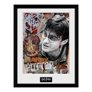 Druck mit Rahmen Harry Potter (30 x 40cm)