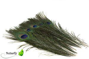 10 echte Pfauenfedern ca. 25-30cm , Farbauswahl:naturell