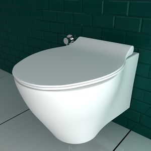 Alpenberger Spülrandloses Tiefspül-WC aus hochwertiger Sanitärkeramik | Abnehmbarer WC-Sitz mit SoftClose Absenkautomatik | inkl. Befestigungsset | passend zu GEBERIT