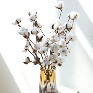 Echte Baumwollzweige, weiße trockene Baumwollzweige, Dekoration aus reiner Baumwolle für Vasen, Blumensträuße aus getrockneten Blumen, als Hochzeitsdekoration oder Tischdekoration verwendet, getrocknete Blumen aus reiner Baumwolle