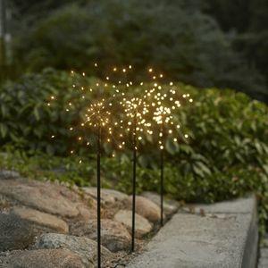 Firework Outdoor