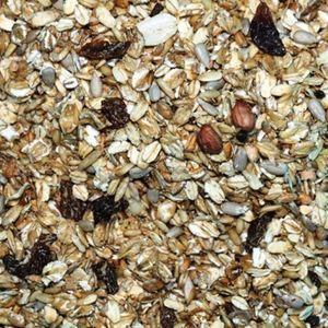 25kg Fettfutter Premium mit Rosinen, Nüssen und Insekten