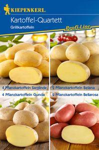 Kiepenkerl Pflanzkartoffeln Mischungstüte Grillkartoffeln