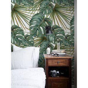 Coloray Fototapete 360x250 cm Vlies-Fototapete - Pflanzen große Blätter Dschungel-Dschungel