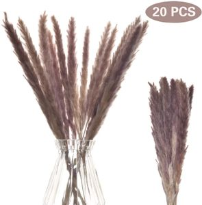 Pampasgras Getrocknetes Deko,Kleine Pampas Gras 60CM naturbeige Natürliches Pflanzen Phragmites Künstlich Blumen