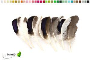 10 Entenfedern ca. 10-15cm Mallard, Farbauswahl:naturell