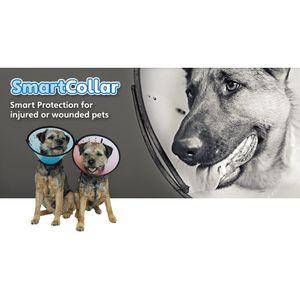 Smart Collar / Halskrause TR430 (Size 2) (kann variieren)