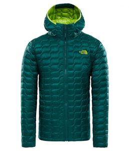 The North Face Herren Thermoball Hoodie Steppjacke, Größe:XL, Farbe:BOTANICAL GARDEN GREEN