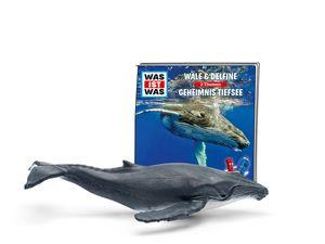 Tonie Hörspielfiguren, Hörspiel:WAS IST WAS - Wale und Delfine/Geheimnisse der Tiefsee