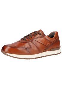 FretzMen - Herren Leder Sneaker in Braun - Branson