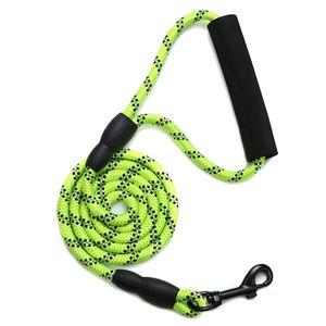 4 FT Reflektierende Hundeleine, Beste Nylon Geflochtene Seil Leine, Hund Leine Training für Mittlere und Große Hunde,Grün