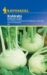 KIEPENKERL® Kohlrabi Delikateß weißer - Gemüsesamen
