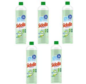 Sidolin Pro Nature Glasreiniger Rundflasche Glas Reinigen 5x1000 ml Reiniger