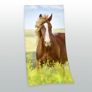 Pferde Velours-Badetuch 75x150cm