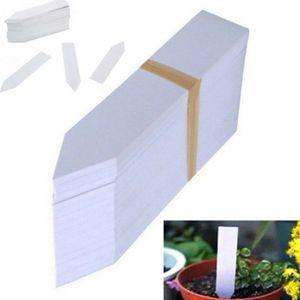 100x Garten Stecketiketten Pflanzen Stecker Schilder Kräuter Blumen Etiketten-White
