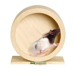 Karlie - BOGIE WHEEL Holz-Laufrad - 20 cm