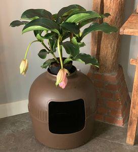 Katzentoilette Flower XXL braun unsichtbare Katzenklo mit deckel 51Ø x 55cm