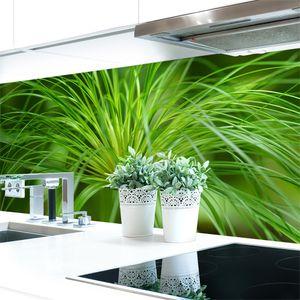 Küchenrückwand Papyrus Pflanze Premium Hart-PVC 0,4 mm selbstklebend - Direkt auf die Fliesen, Größe:340 x 60 cm