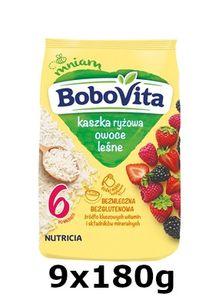 GroßhandelPL Reis Bobovita Brei Waldfrucht nach 6 Monaten 9x180g
