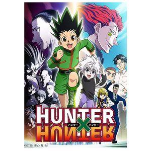 Japanische Anime Hunter X Hunter Poster gesponnene Seide Home Decor Wandposter --S