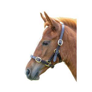 Blenheim Pferdehalfter Leder verstellbar ER384 (Jährling) (Havana)