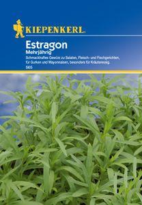 KIEPENKERL® Estragon - Kräutersamen